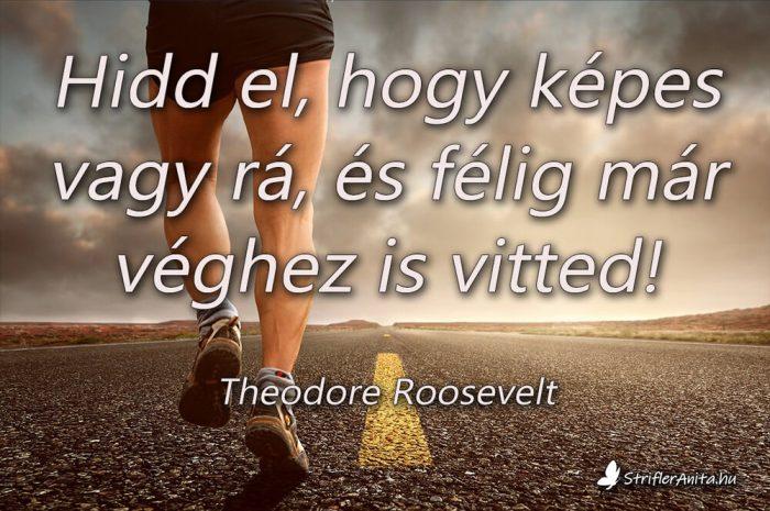 Theodore Roosevelt idézetek