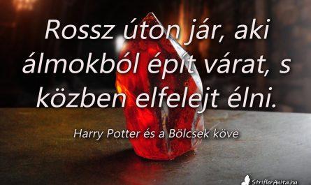 Harry Potter és a Bölcsek köve idézet